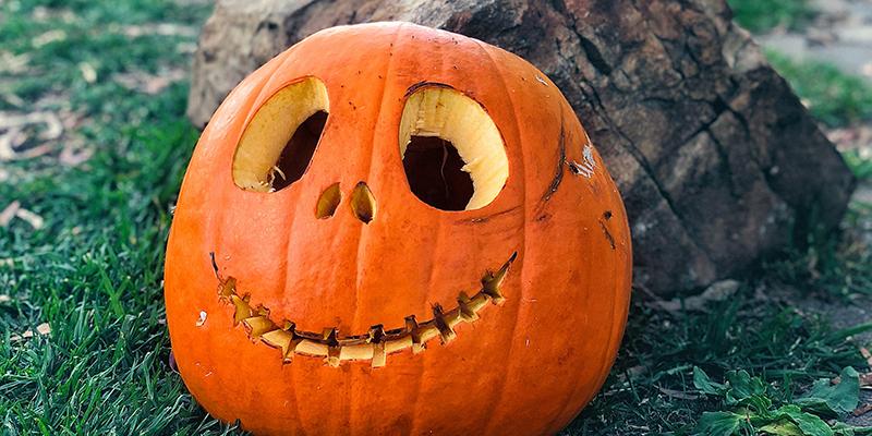 Pumpkin Stress Balls